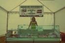 IV Encuentro - Mercado de saberes y sabores en el Bajo Tormes - _6